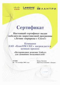 Сертификат победителя маркетинговой программы «Летние сюрпризы с Cisco»